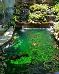 Facts about koi fish ponds including the different aspects included in a koi pond and how care for koi fish successfully. Fish Ponds Backyard, Backyard Water Feature, Koi Ponds, Outdoor Fish Ponds, Outdoor Fountains, Outdoor Waterfalls, Garden Ponds, Garden Water, Water Fountains