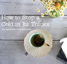 And to remember for next time I feel myself getting sick: Immunity Boost: How to Stop a Cold In Its Tracks