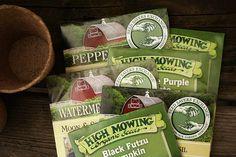 Roly Poly Bug Natural Organic Home Garden Health Howard Garrett Dirt Doctor Gardening