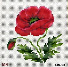 Flowers poppy cross stitch.