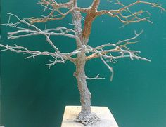 Baumbau---Bau_einer_Eiche_nach _der_Drahtdrillmethode Miniature Trees, Military Modelling, Wire Art, Tree Of Life, Model Trains, Decoration, Scale Models, Metal Art, Projects To Try
