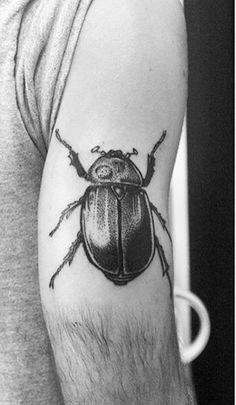 What does beetle tattoo mean? We have beetle tattoo ideas, designs, symbolism and we explain the meaning behind the tattoo. Beetle Tattoo, Insect Tattoo, Stick And Poke, Ankle Tattoo, Skin Art, Tattoo Inspiration, Cool Tattoos, Tatting, Body Art