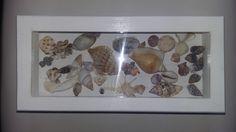 arte com conchas do mar - Pesquisa Google