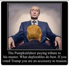 EVERY SINGLE ONE OF TRUMPS RACIST, UNPATRIOTIC, CULT VOTERS ARE ACCESSORIES TO TREASON!!! ALL TRAITORS!!!