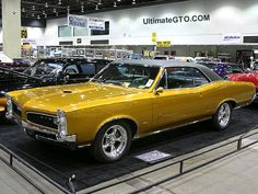 1966 GTO Hardtop - when muscle cars really hard muscle!