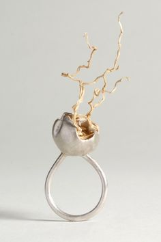 Laura Bennett - Contemporary Jeweller - Dome Series......C Fox: Perhaps not the most practical ring, but lovely just the same.