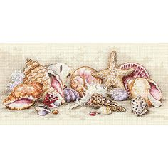 Cross-stitch kit features detailed seashell scene Counted cross stitch kit includes 18-count ivory Aida cloth, cotton thread, needle and instructions Gold Collections 'Seashell Treasures' needlework p