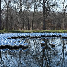 Yayoi Kusama installs 1,300 floating steel balls at Philip Johnson's Glass House estate