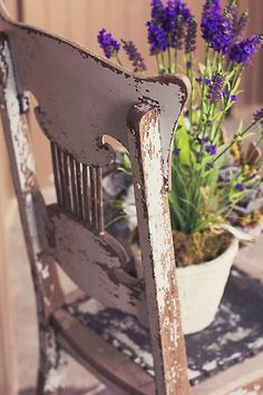 pot on rustic chair