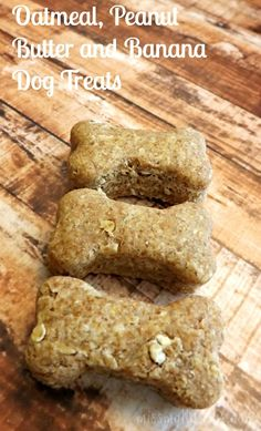 Oatmeal, Peanut Butter Banana Dog Treats Recipe Good! Any fruit, make double batch, 350 for less time?