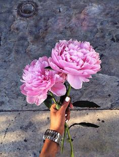 pink peonies forever {{ and white nail polish }}