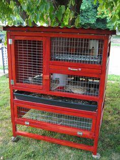 quail coop