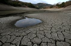 Nestlé calls world's water scarcity 'more urgent' than climate change – as it sells bottled water from drought-ridden California Survival Prepping, Emergency Preparedness, Doomsday Prepping, Emergency Planning, Emergency Preparation, Emergency Food, Survival Kits, Survival Food, California Drought