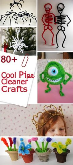 Cool Pipe Cleaner Crafts! … More