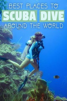 See the planet from another side! Rather than exploring the architecture and landscape, why not see something different on your next adventure? Forget about the world above, and start exploring life below sea level. Whether you are thinking about taking y