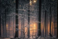Last Snow by Peter Ensrud on 500px