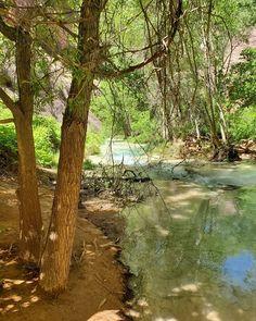 #Havasupai19 #HavasupaiFalls #VegasLocal #travel #travelblogger #getoutside #hike #adventure #backpacking #girlswhohike #girlswhobackpack #AZCulture #SouthwestGallery #Arizona #GrandCanyon #roadtrip #nature #BeaverFalls #HavasuFalls #MooneyFalls #Havasupai #Supai #GetOutdoors #backpack #camping #MyInspirationalPlace #waterfalls #chasingwaterfalls Havasupai Falls, Beaver Falls, Backpack Camping, Get Outdoors, Get Outside, Waterfalls, Backpacking, Grand Canyon, Arizona