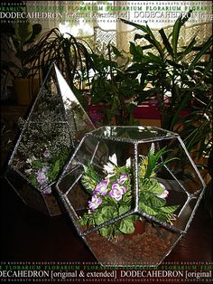 KAGADATO. Florarium - DODECAHEDRON [extended] & DODECAHEDRON [original]. The multi-faceted form. Made by Tiffany technology. Clear glass. It consists of many parts. The metal compound glass. It can be used as a lamp or a vase for flowers.