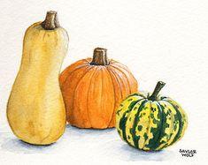 Pumpkins And Squash - Lessons - Tes Teach
