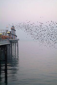 Helter Skelter: Brighton Pier.