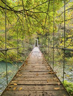 Bridge in Parque Nacional Fragas del Eume, Galicia, Spain (by RTH FOTOS). love this!!