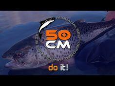 Willkommen bei 'Go-Fair-Fishing' , dem Online Magazin für Fliegenfischer, Spinnfischer und Interessierte.