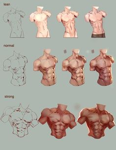 Drawing body poses men male torso 20 ideas for 2020 Drawing Body Poses, Body Reference Drawing, Anatomy Reference, Art Reference Poses, Design Reference, Drawing Tips, Hand Reference, Drawing Muscles, How To Draw Muscles