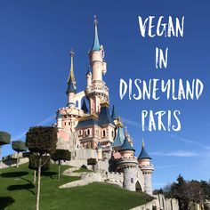 What I ate Vegan in Disneyland Paris, France