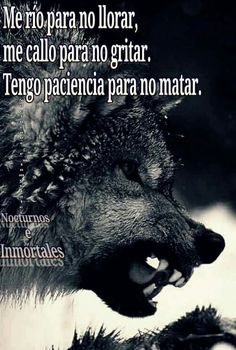 Der Steppenwolf, Good Night Prayer, Wolf Life, Wolf Stuff, Wolf Quotes, Wolf Tattoos, Lone Wolf, Strong Quotes, Spanish Quotes