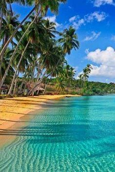 Hou jij wel van luxe? Komt goed uit! We hebben de perfecte deal voor je gevonden: 9 dagen lang vertoeven op Jamaica, in een 5***** resort met All Inclusive... Wanna know more? Check dan snel de deal ----> https://ticketspy.nl/all-inclusive/super-luxe-relax-vakantie-op-jamaica-9-dagen-inclusive-5-resort-va-e849/