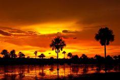paisaje llanero DE CASANARE - Buscar con Google Orange Ombre, Moon Rise, Nature Scenes, Beautiful Sunset, Google Images, Sunrise, Instagram, Clouds, Sky