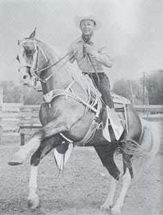 Trigger Jr. and Roy Rogers.  (Trigger Jr. Was a Tennessee Walking Horse, registered as Allen's Gold Zephyr).  www.thewarmbloodhorse.com