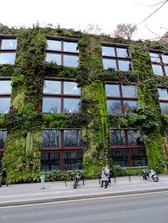 Quai Branly Museum Exterior Garden Wall, designed by Patrick Blanc