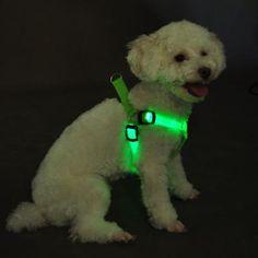 Favorite Green LED Flashing Dog Safety Harness