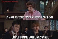 Ideas funny memes jokes humor harry potter for 2019 Harry Potter Tumblr, Harry Potter Film, Harry Potter Memes Clean, Harry Potter World, Draco Malfoy, Hermione, Memes Br, Memes Humor, Best Funny Images