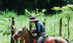 Tocori Waterfalls Rancho Don Gilberto Quepos, One Day Tour, Whitewater Rafting, Family Show, Adventure Tours, Walking In Nature, Day Tours, Horseback Riding, Waterfalls