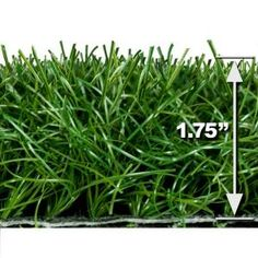 I am really thinking of putting AstroTurf in my backyard and so far Bryan is too!! :o) Turf Evolutions Economy Indoor Outdoor Landscape Artificial Synthetic Lawn Turf Grass Carpet, 15 ft. x Your Length-Lite15 at The Home Depot