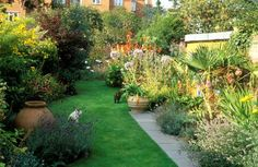 7 golden rules to give your long and narrow garden the wow factor all year round
