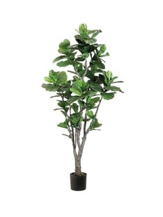 5 Persevering Clever Tips: House Plants Decor artificial plants wall boxwood hedge.Artificial Plants Decoration Home artificial garden wall boxwood hedge. Artificial Plants And Trees, Artificial Plant Wall, Indoor Trees, Artificial Flowers, Indoor Plants, Indoor Gardening, Potted Trees, Potted Plants, Palm Trees