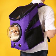 Dog & Cat Space Capsule-Styled Backpack