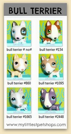 LITTLEST PET SHOP LIST – BULL TERRIER DOGS. Learn all the pet numbers for all the bull terriers that hasbro toys sells. Many more pet shop lists available at http://mylittlestpetshops.com. Repin if BULL TERRIERS are one of your favorites!
