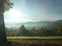 Herbstliche Morgenstimmung am Rosenneuheitengarten in Baden-Baden. It`s a wonderful hike from the Hotel am Sophienpark up to the rosegarden.  http://www.hotel-am-sophienpark.de/   Foto von baden-baden.de