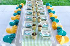 boy-baptism-with-picnic-theme-10