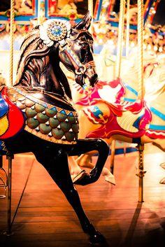 Items similar to Carousel Horse Fine Art Photography Horse Art Black HorseCarnival Decor State Fair of Texas Animal Print Nursery Childrens Wall Art on Etsy Art Du Cirque, Carosel Horse, Fair Rides, Black Stallion, Childrens Wall Art, Carnival Rides, Painted Pony, Fun Fair, Horse Art
