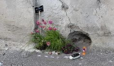 Back to nature with the guerilla gardener: The artist who plants tiny trees in potholes - Alles über den Garten Gardens Of The World, Small Gardens, Mini Gardens, Miniature Gardens, Back To Nature, Small Ponds, Garden Types, Seed Pods, Garden Care
