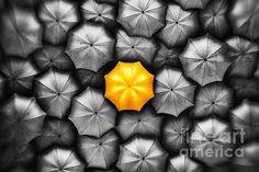 New York City Yellow Umbrella. Yellow Umbrella, New York City, Display Ideas, Simple, Photograph, Design, Art, Fotografie, Fotografia