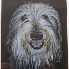 Coloured pencil commission by @caiseycrafts https://caiseycrafts.wixsite.com/mysite