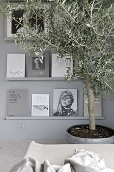 Grey book wall