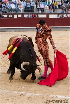 Morenito de Aranda.  Goyesca 2 de mayo de 2015. Madrid Matador Costume, Bull Painting, Dance Of Death, Legends And Myths, Post Animal, Flamenco Dancers, Southwest Art, Western Art, Mayo