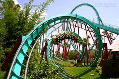 Kumba - Busch Gardens, FL: Check!